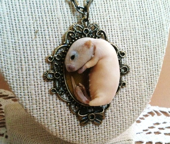 taxidermy kitten mouse necklace-f50586
