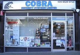 Cobra Security Syste...