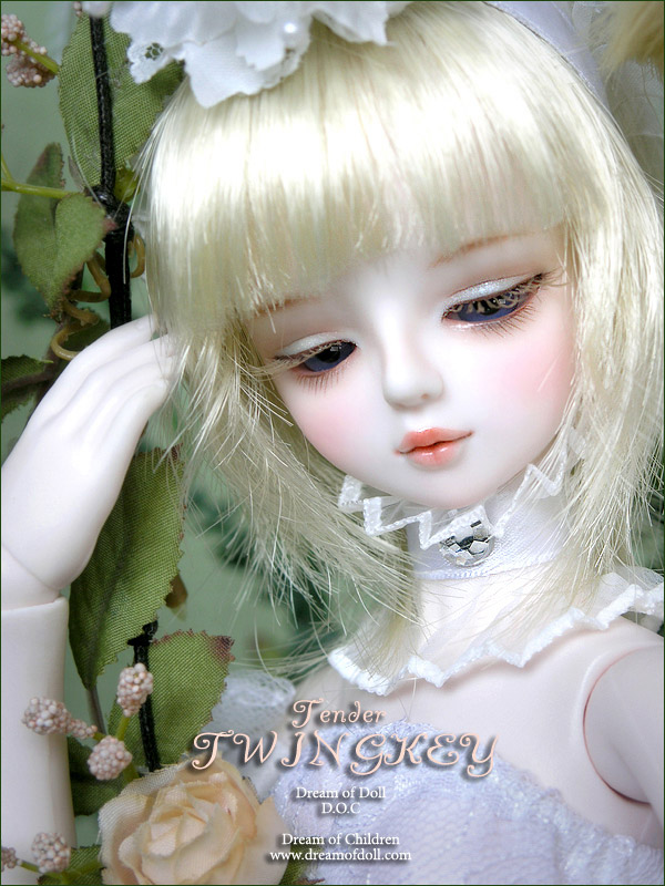 Images Of Cute Dolls Wallpaper Dream Of Doll D O C Twingkey Tender 187 Bjdb Org