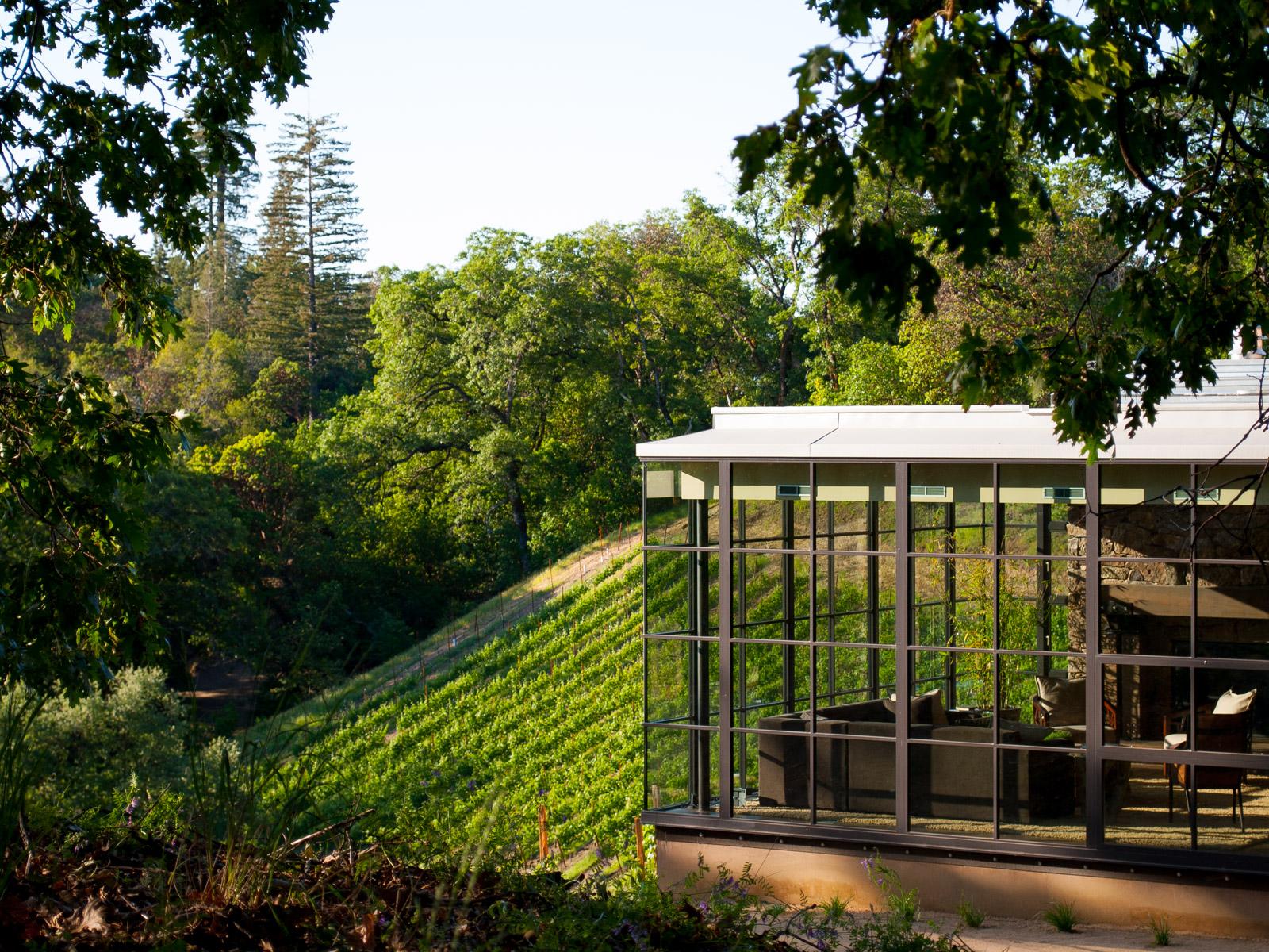 Modern Sonoma California Glass House on Vineyard-7