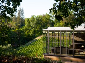 Modern Sonoma California Glass House on Vineyard-7