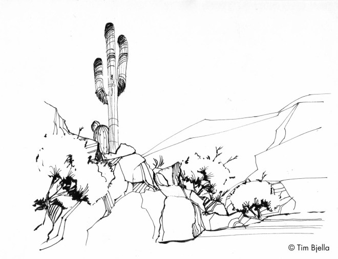 Tim Bjella Sketches - Desert Southwest
