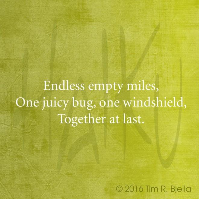Haiku - Bug and Windshield