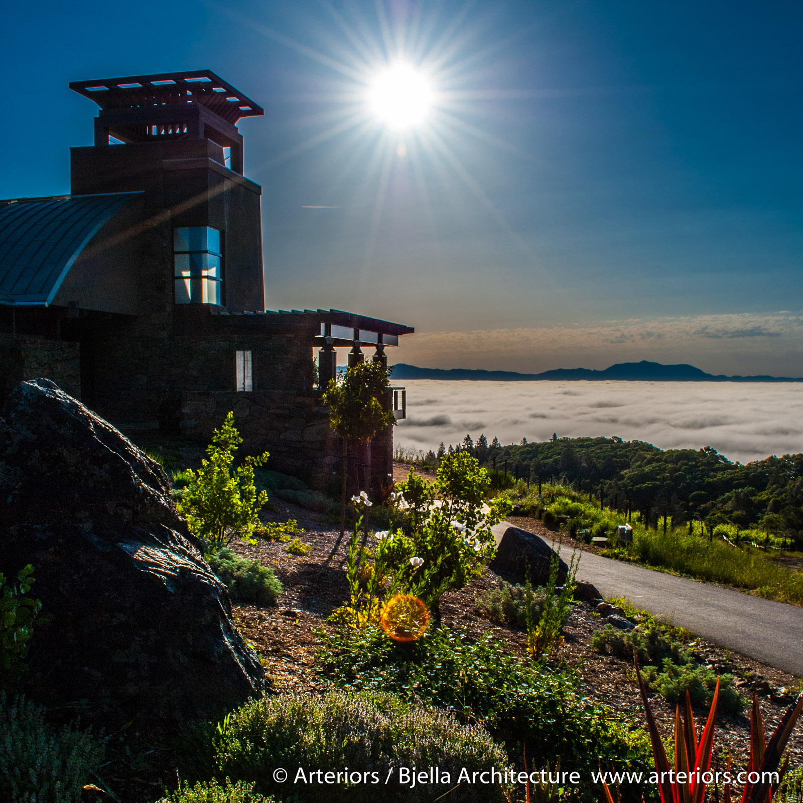 Mountain Vineyard House in Fog California by Arteriors Architects-2