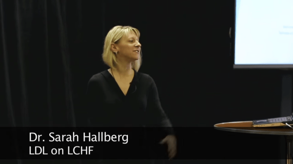 Hallberg LDL on LCHF 1