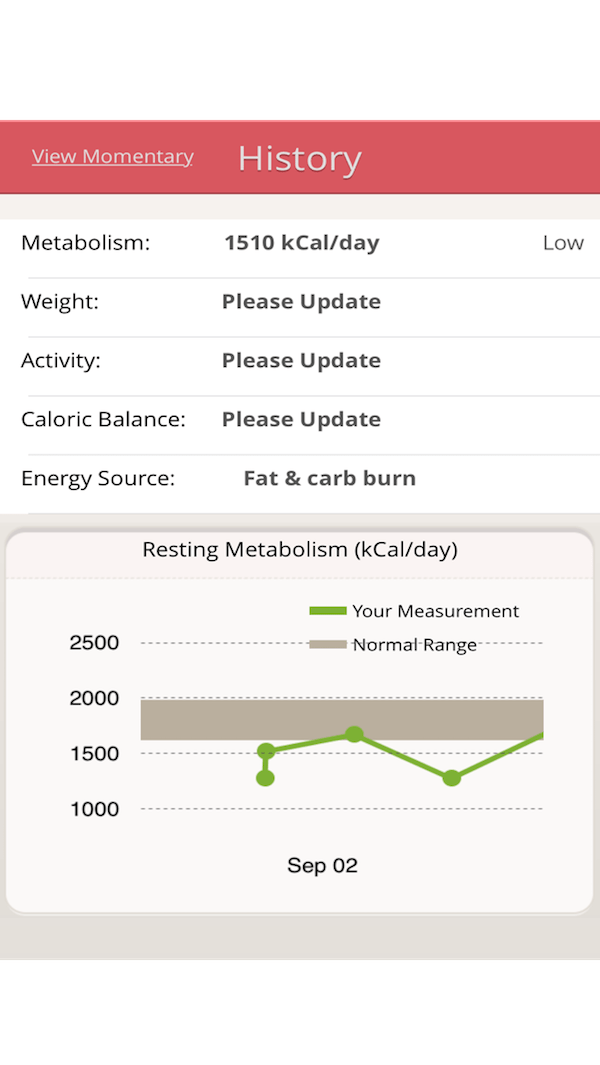 My Average Resting Metabolic Rate Calculated By The Breezing - The BJJ Caveman