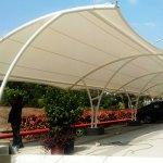 canopy membrane 1