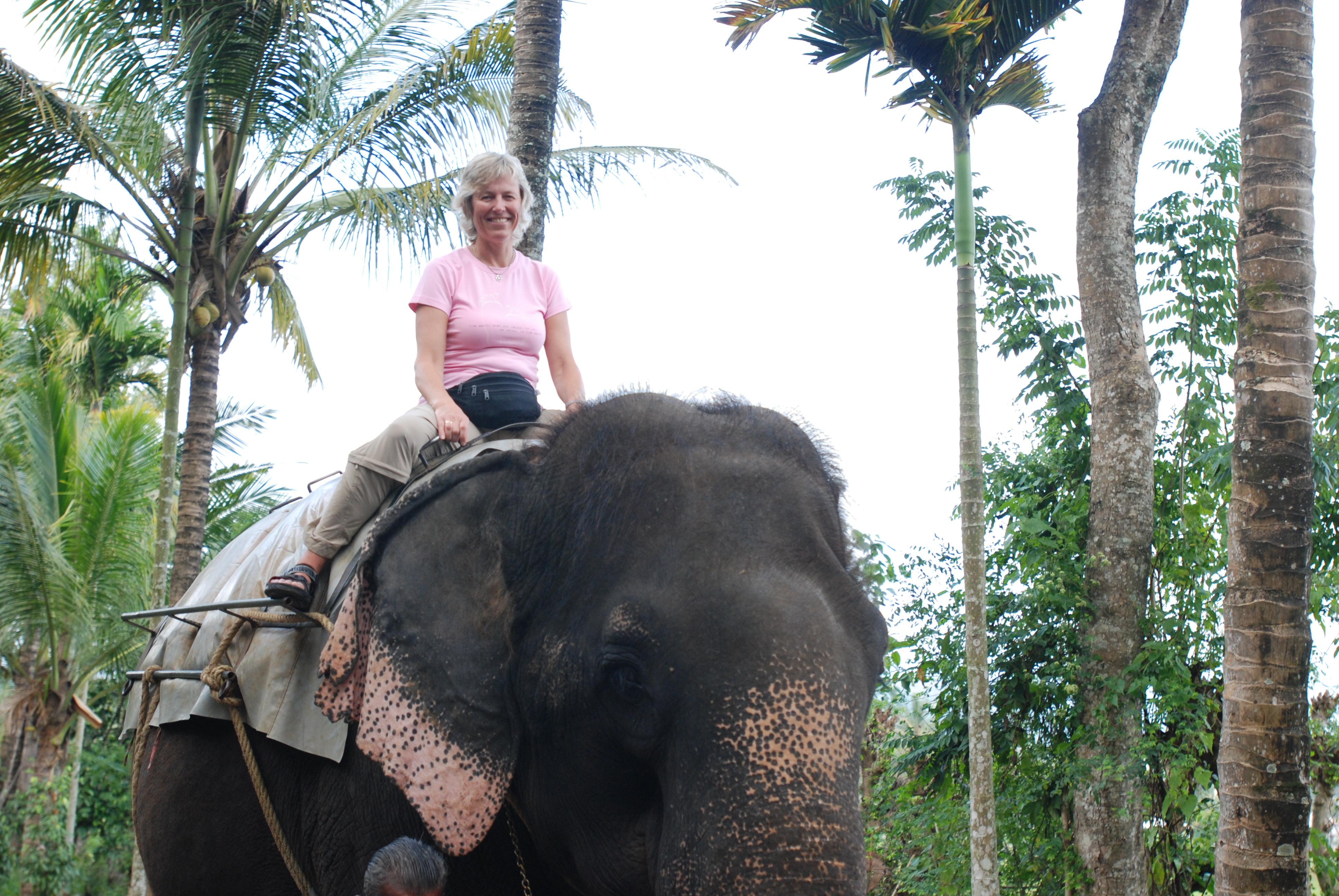 Elefantpiken