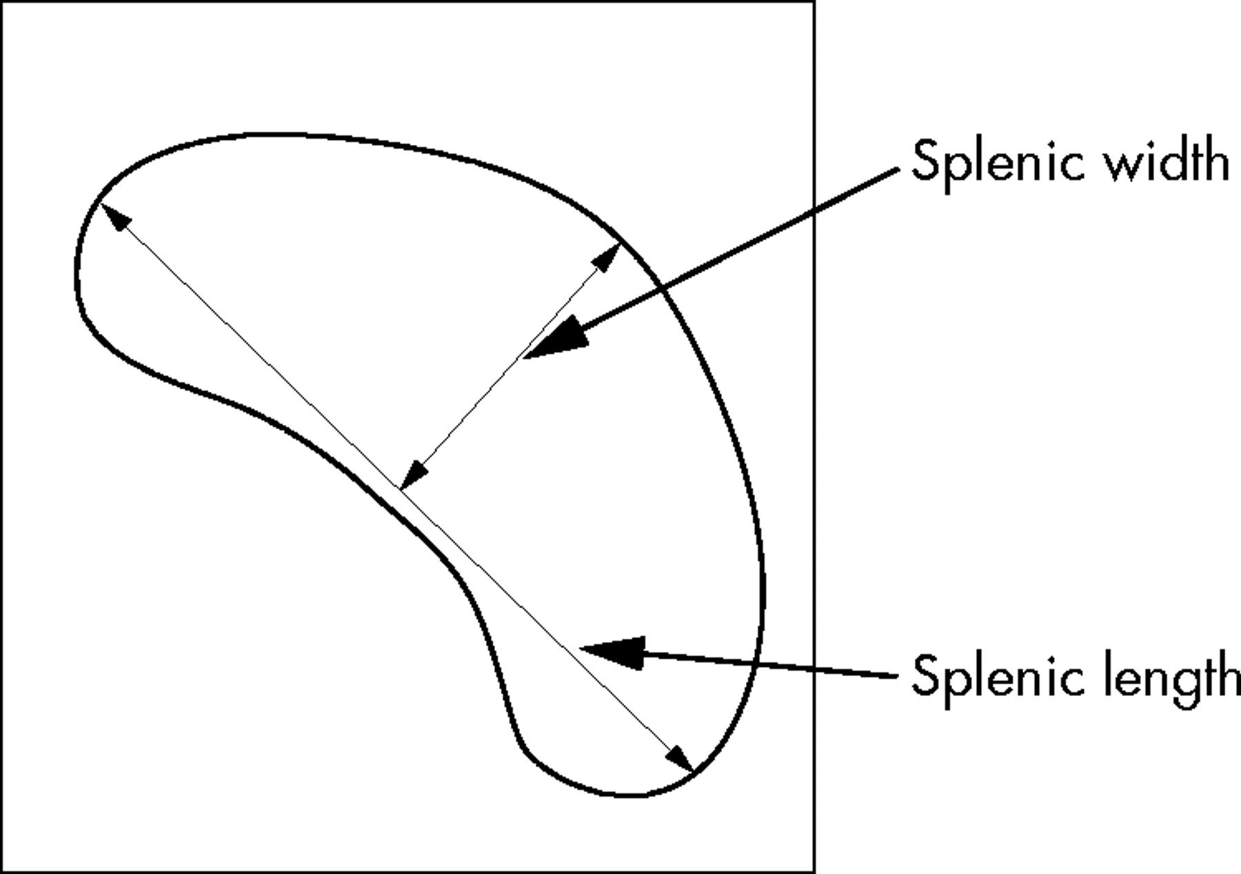Ultrasound assessment of spleen size in collegiate