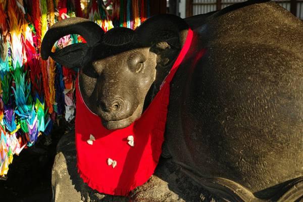 浅草デートスポット⑦牛嶋神社で牛を撫でる