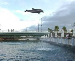 鹿児島のデートスポット③デートに最適 いおワールドかごしま水族館