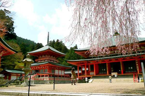 滋賀県観光スポット①高野山と並ぶ仏教の聖地 「比叡山延暦寺」