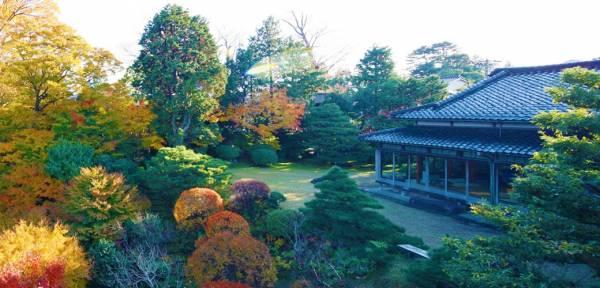 金沢の加賀料理⑤文化財の中で頂く加賀料理-辻家庭園-
