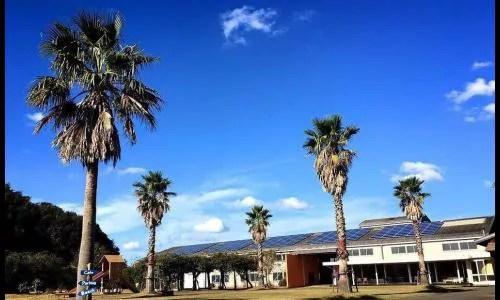 香川県観光スポットランキング④夏をおもいっきり楽しめる!サンリゾート二尾