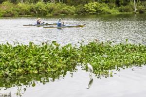 florida kayaking tours near orlando