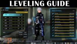 General Leveling Guide