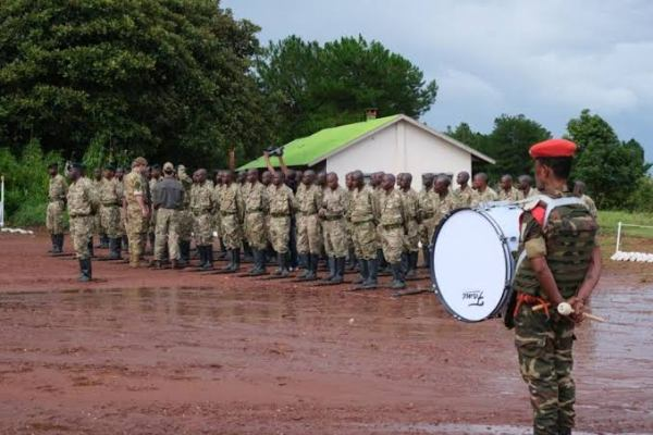 Nord-kivu  : Certains agents de l'ICCN impliqué  dans la vente des munitions de guerre à  certains éléments Fardc.