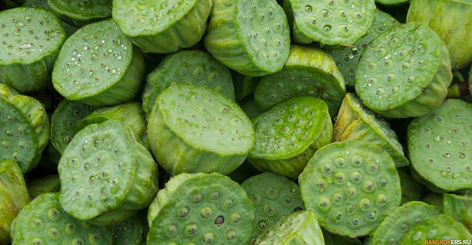 Лотос - род земноводных многолетних травянистых растений (семейство лотосовые)