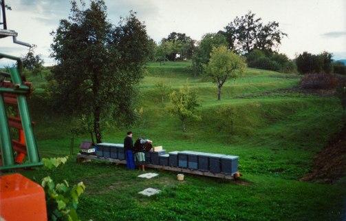 slo-2001-32-26