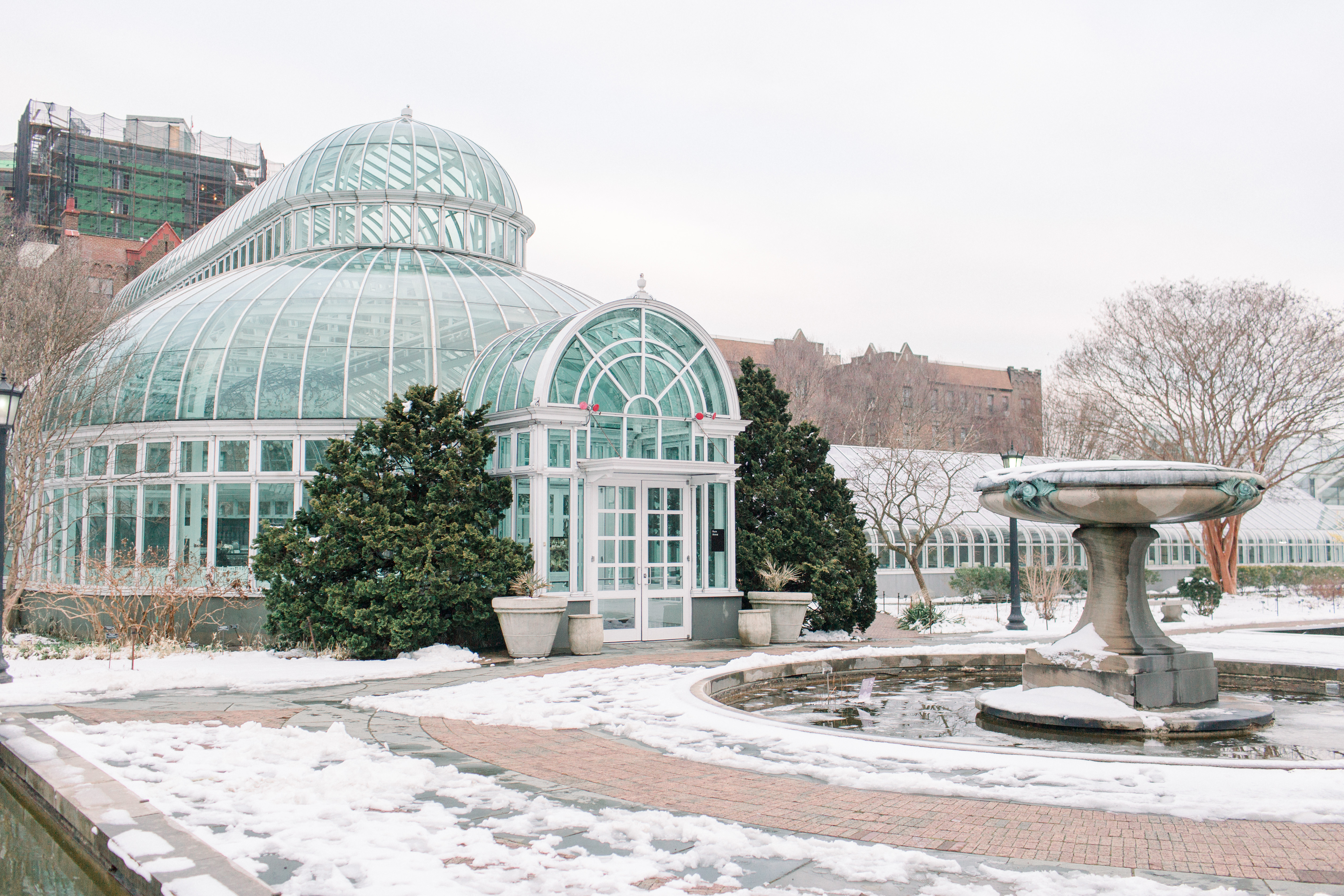 Palm house weddings at brooklyn botanic garden offers gorgeous outdoor settings and the exquisite palm house for your reception. Brooklyn Botanic Garden Winter Wedding Brooklyn Bride Modern Wedding Blog
