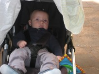 Chilling in the stroller.