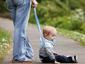 Some people liken children on leashes to walking a dog. photo by www.todaysparent.com