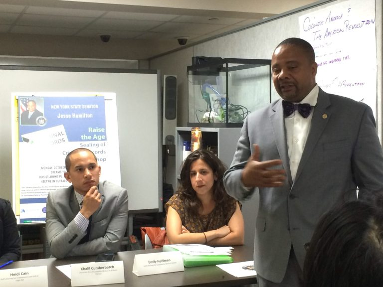 State Senator Jesse Hamilton, BK Reader, Criminal Justice Reform, Crown Heights, Raise the Age legislation, Fortune Society, Division of Criminal Justice Services , Drug Policy Alliance, Raise the Age, Turnstile Jumping, Fortune Society,