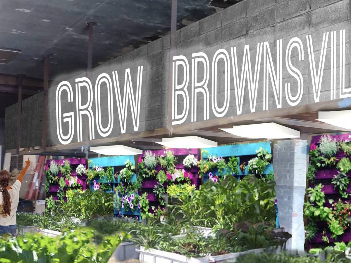 The farm will serve as a sustainable local food source for Brownsville residents