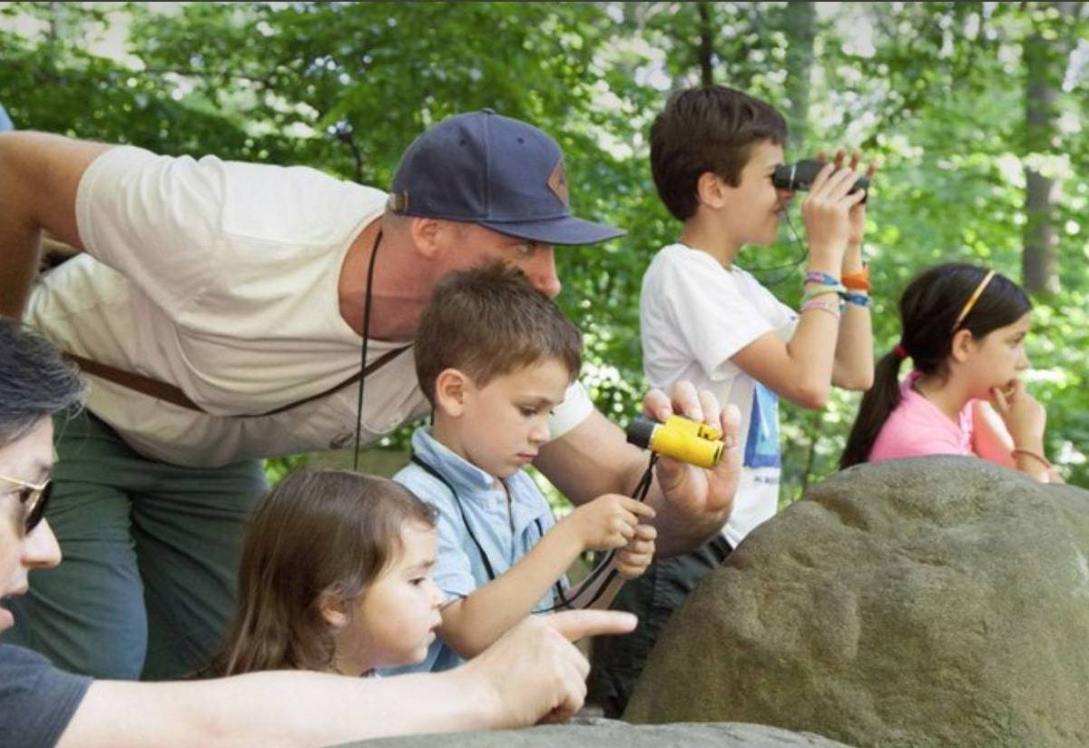 Over 150 migratory species are set to make an appearance in Prospect Park, and visitors can experience this spectacular event during guided tours