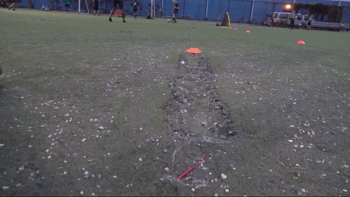 Group of activists call for turf to be repaired at Bushwick Inlet Park