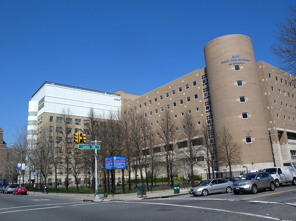 Brooklyn's SUNY Downstate becomes mental health 'hub' of State University system