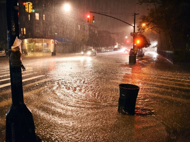 Bed-Stuy Area Files More Than 600 Damage Complaints After Storm