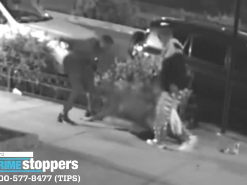 Woman beaten, thrown into planter during violent robbery in Brownsville