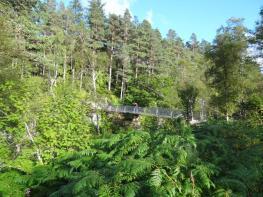Corrieshalloch Gorge (18)