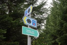 Scottish Rights of Way sign and Great Glen Way/Route 78 signs in forest.