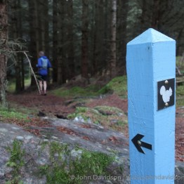 Leaving the track above Foyers to enter the woodland trail in the Farigaig forest,