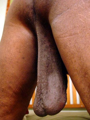 Saggy Balls Nude : saggy, balls, Black, Amateurs, Naked, Saggy