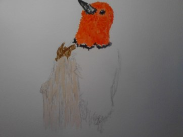 Red Headed Woodpecker watercolor painting on A3 paper