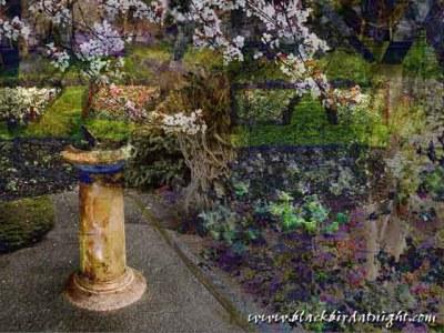 Garden of Time © 2003 Jane Waterman