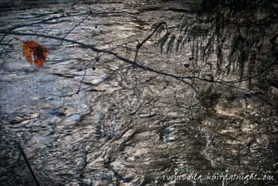 Quicksilver River © 2011 Jane Waterman