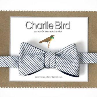 Noeud papillon rayé - Bow tie, 31€