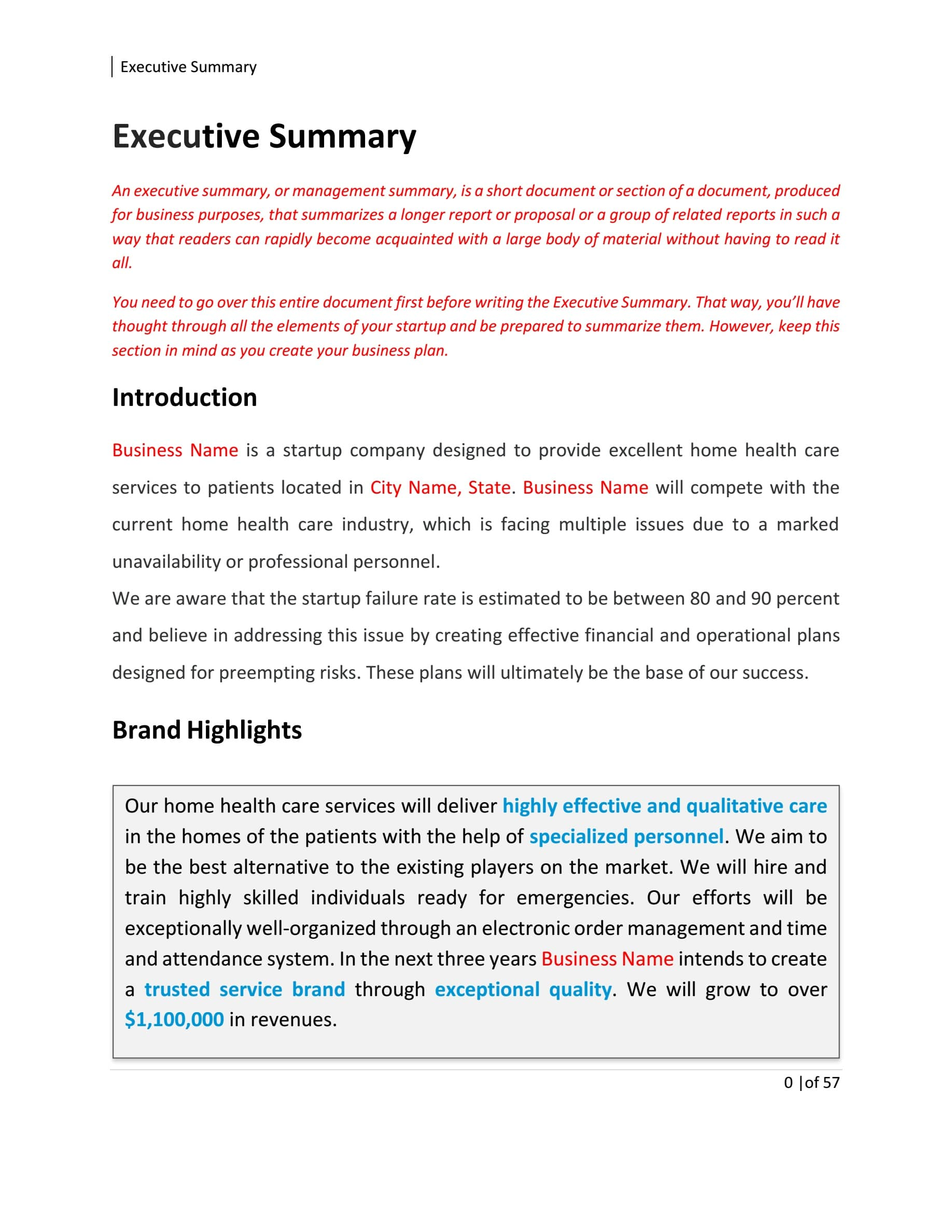 Home Health Care Business Plan Template Sample Pages