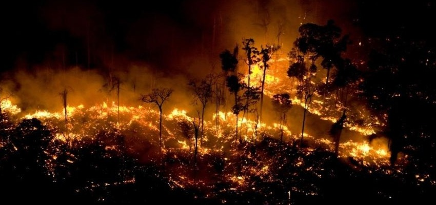 Burning in the Amazon Rainforest is the same as The Indigenous