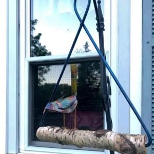 copper bird on a swing