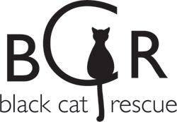 About Black Cat Rescue