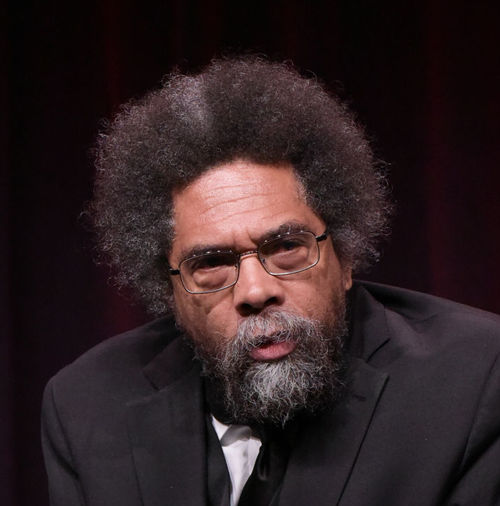 "Cornel West participates in the ""Black America Since MLK: And Still I Rise"" panel during the PBS Television Critics Association summer press tour on  July 29, 2016, in Beverly Hills, California. (Richard Shotwell/Invision/AP)"