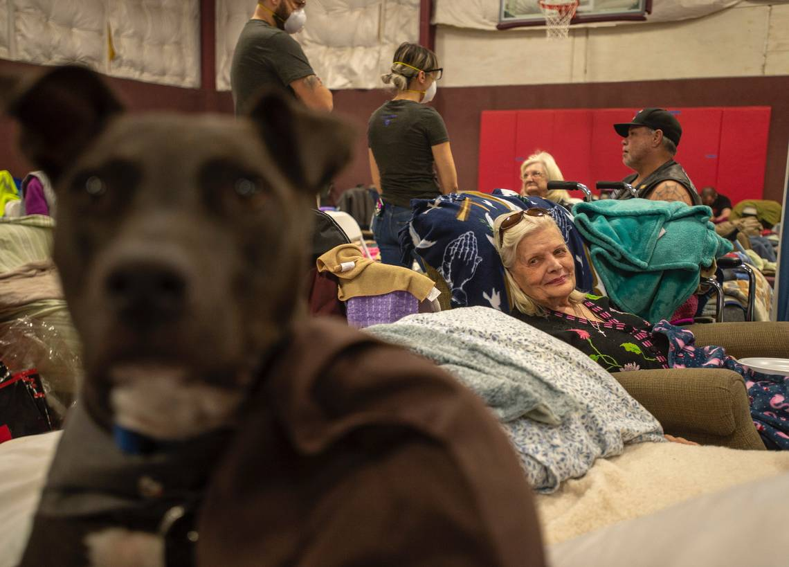 Paradise evacuee Patty Saunders, 89, looks at her friend's dog Max at East Ave Church in Chico on Friday. (Daniel Kim, dkim@sacbee.com)