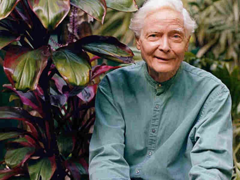 W.S. Merwin found inspiration in his conservation work and in his home on the Hawaiian island of Maui. (Jill Greenberg/Courtesy of Copper Canyon Press)