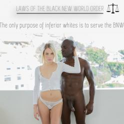 Pleasure & Privilege - image  on https://blackcockcult.com