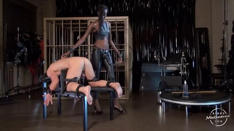 Dominatrix Disciplinarians Training Whites - image  on https://blackcockcult.com